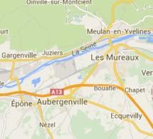 Yvelines : un homme de 69 ans meurt empalé en taillant une haie