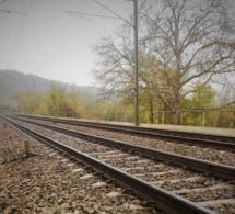 Suicide d'un homme de 74 ans dans les Yvelines : les 200 passagers du train Dreux - Paris évacués