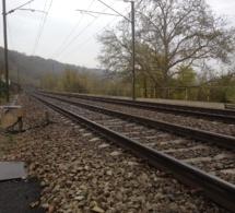 Yvelines : les trains arrêtés à cause d'un homme qui déambulait sur les voies à Sartrouville