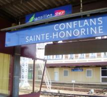 Yvelines. Des perturbateurs dans le train Pontoise - Paris : vingt-deux interpellations