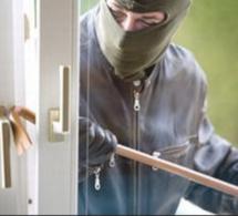Yvelines. Evecquemont : quatre cambrioleurs arrêtés après une chasse à l'homme dans Meulan
