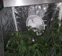 Près de Brionne (Eure), la maison en feu abritait une culture de cannabis et des armes