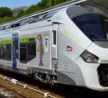 Carnaval de Granville : train et tarifs spéciaux à partir de Caen le 7 février