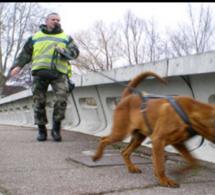 Seine-Maritime : en situation irrégulière, un voleur de métaux trahi par sa voiture
