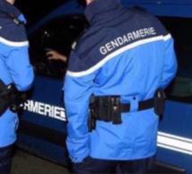Rave-party de Gasny : 15 permis confisqués et 30 procédures pour détention de stupéfiants