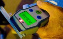 Le semi-remorque zigzaguait sur la RN 31 : son conducteur avait plus de 2 g d'alcool dans le sang
