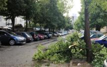 Risque d'orages et coups de vent : la Seine-Maritime en vigilance jaune tout le week-end