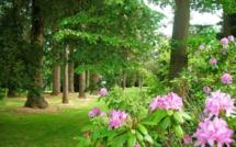 Devenez observateur des saisons : rendez-vous le 9 avril au Domaine d'Harcourt (Eure)