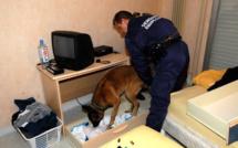 Un trafic de stupéfiants démantelé à Brionne : trois mineurs mis en examen, un majeur jugé et écroué