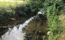 La sécheresse gagne du terrain en Seine-Maritime et dans l'Eure