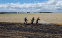 1 hectare de lin détruit par un incendie accidentel dans un champ à Bourville