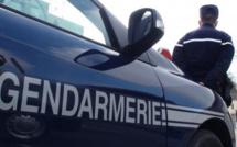 Eure : retrouvée par le chien pisteur des gendarmes cachée dans un champ de maïs après un accident
