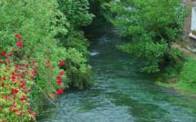 La rivière l'Eaulne en Seine-Maritime victime d'une importante pollution : les riverains mis en garde