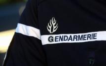 Yvelines : deux vendeurs de stupéfiants interpellés par les gendarmes de Houdan