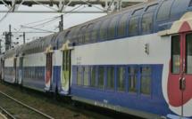 Mantes-la-Jolie : les élus manifestent pour l'amélioration des conditions de transport dans les trains