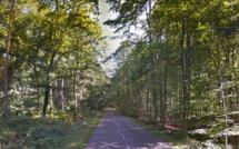 Seine-Maritime : un homme découvert mort en forêt de Canteleu, le médecin légiste conclut à un suicide