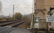 Yvelines : 900 voyageurs sur les voies entre Sartrouville et Maisons-Laffitte a cause d'un train en panne