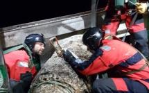 Calvados : une mine allemande d'une tonne dans les filets d'un chalutier au large de Grandcamp-Maisy