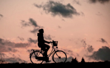 Eure : le cambrioleur à vélo est retrouvé grâce au flair du chien des gendarmes