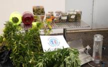 Des produits stupéfiants saisis au domicile d'un moniteur d'auto-école dans l'Eure