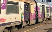 Seine-Maritime : deux TER supprimés entre Le Havre et Paris après une fuite suspecte sur un train
