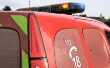 Seine-Maritime : tombé dans un puisard, à Biville-la-Baignarde, le cheval est remonté par les sapeurs-pompiers