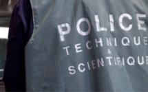 Yvelines : deux faux policiers dérobent une statuette chez une dame de 87 ans à Bois-d'Arcy