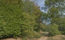 Eure : un homme décède d'un arrêt cardiaque en forêt de Bord-Louviers
