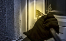 Il surprend deux cambrioleurs en train de casser sa porte, à Vernouillet (Yvelines)