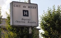 Attaqués dans la rue par des chiens, une femme et un homme blessés sérieusement, près de Rouen