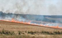 Seine-Maritime : 5 hectares de chaume ravagés par les flammes dans le Pays de Bray