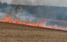 Incendies en Seine-Maritime : 500 m2 de sous-bois et 2 ha de récolte détruits par les flammes