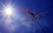 Pollution à l'ozone : les recommandations à observer dans l'Eure et en Seine-Maritime