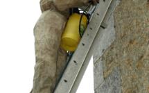 Yvelines : en retirant un nid de guêpes, il tombe de l'échelle et se blesse grièvement à Sartrouville