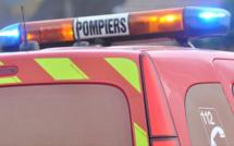 Les sapeurs-pompiers mobilisés pour récupérer un chien tombé dans une cavité à Étretat (76)