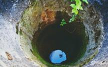 Eure : un chaton meurt noyé dans un puits à Champigny-la-Futelaie