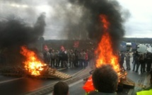 Renault : des salariés bloquent l'accès à l'usine de Flins