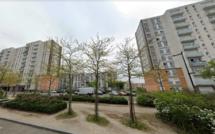 """Trafic de stupéfiants : un """"point de deal"""" démantelé, deux adolescents interpellés sur les Hauts-de-Rouen"""
