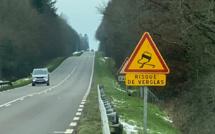 Verglas : suspension partielle des transports scolaires en Normandie ce jeudi 11 février