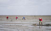 Grandes marées en Normandie : prudence sur le littoral du 28 au 31 mars