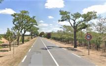 Yvelines : un enfant de 12 ans tué par un camion en forêt de Saint-Germain-en-Laye