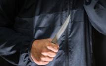 Féminicide près de Rouen : il tue sa compagne de plusieurs coups de couteau à Mont-Saint-Aignan