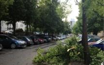 Orages et rafales de vent : 35 000 foyers privés d'électricité en Normandie