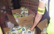 20 000 prises tue-moustiques non conformes saisies sur le port du Havre