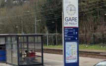 Seine-Maritime : une personne âgée percutée par un train en gare de Pavilly