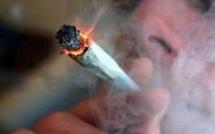 Le Rouennais était sous l'influence de l'alcool et du cannabis