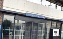 Yvelines : le flair de «Moka»permet l'interpellation de l'auteur d'un vol de voiture avec violences