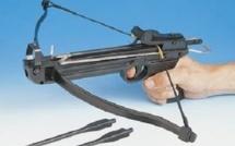 Qui voulait tuer le médiateur de la TCAR avec une flèche d'arbalète ?