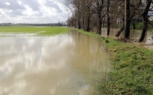 Crue de la Seine : risques de débordements ce week-end dans l'agglomération de Rouen