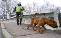 Le chien Saint Hubert de la gendarmerie a suivi la trace de la disparue de Tôtes, sans résultat